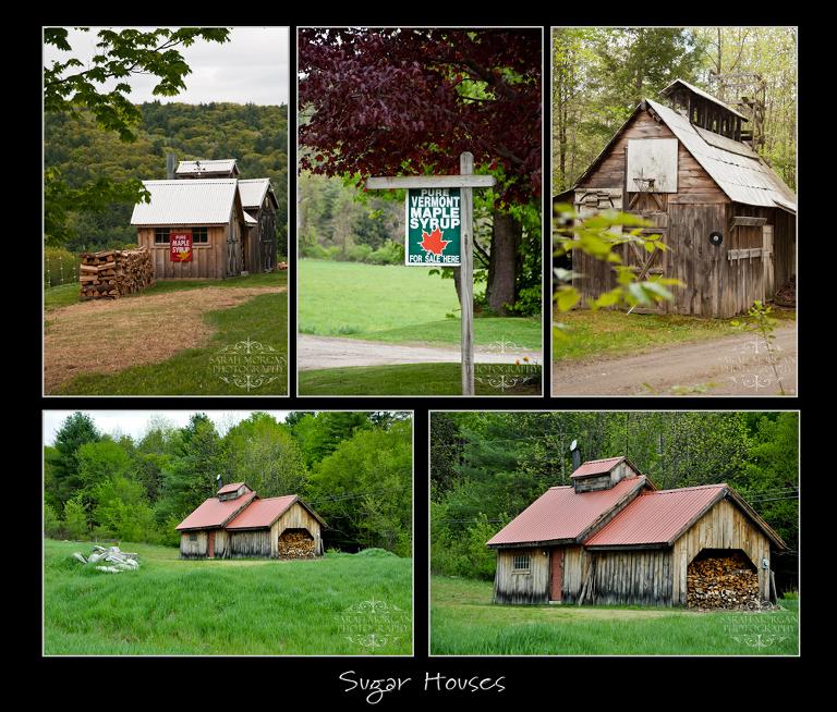 New England spring photos