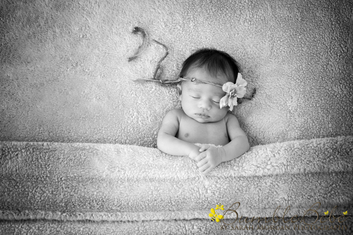 Baby Akemi newborn portrait